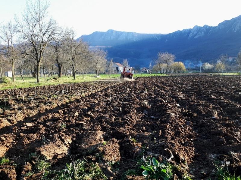 Poljoprivreda u Župi